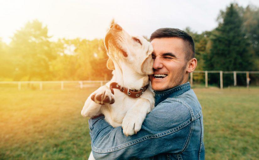mejores regalos para perrosmejores regalos para perros